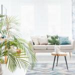 Natürlich wohnen – Aus der Natur in Ihr Zuhause